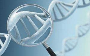 преимплантационной генетической диагностики